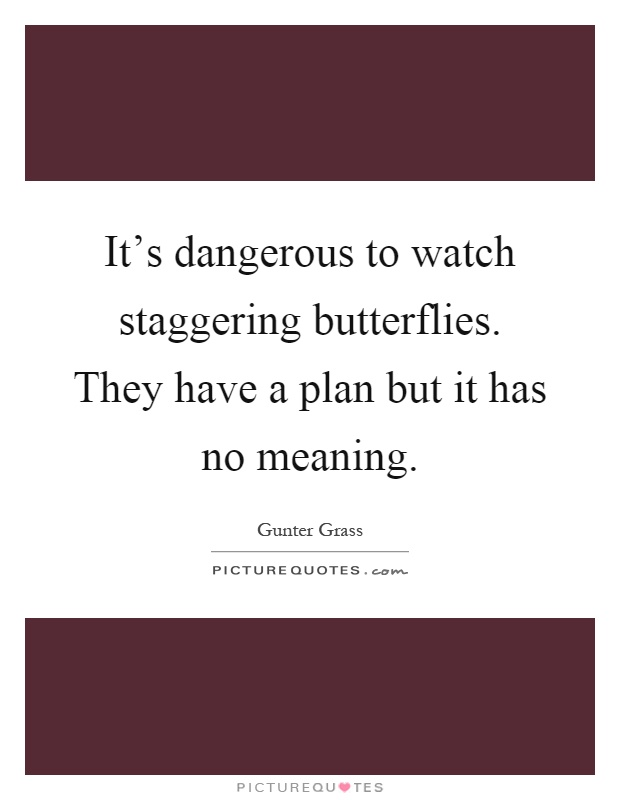 It's dangerous to watch staggering butterflies. They have a plan but it has no meaning Picture Quote #1