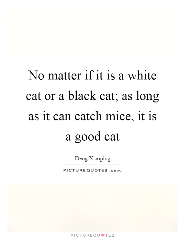 No matter if it is a white cat or a black cat; as long as it can catch mice, it is a good cat Picture Quote #1