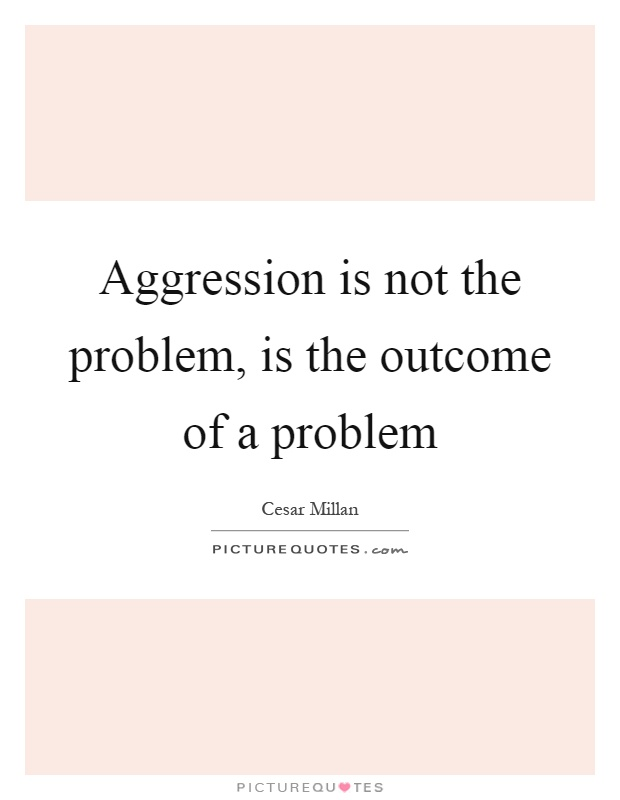Aggression is not the problem, is the outcome of a problem Picture Quote #1