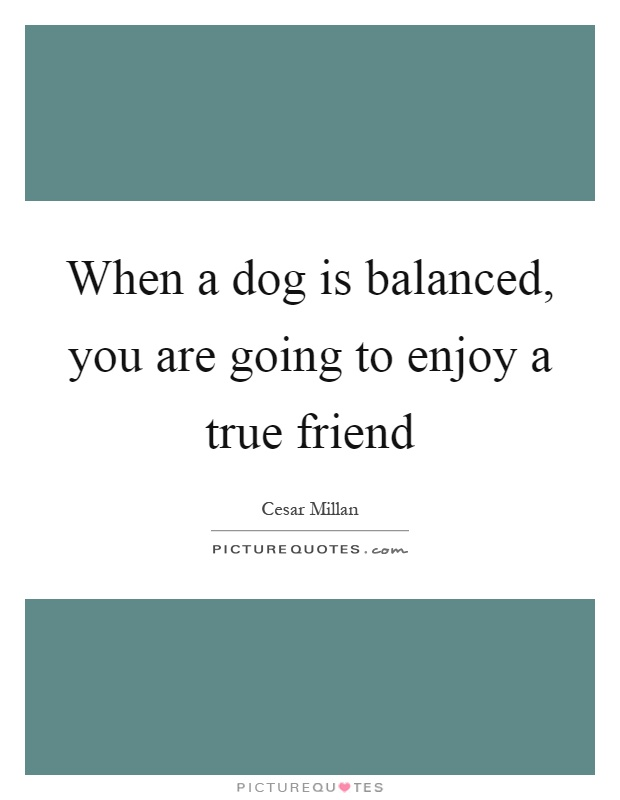 When a dog is balanced, you are going to enjoy a true friend Picture Quote #1