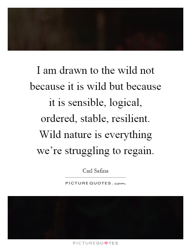 I am drawn to the wild not because it is wild but because it is sensible, logical, ordered, stable, resilient. Wild nature is everything we're struggling to regain Picture Quote #1