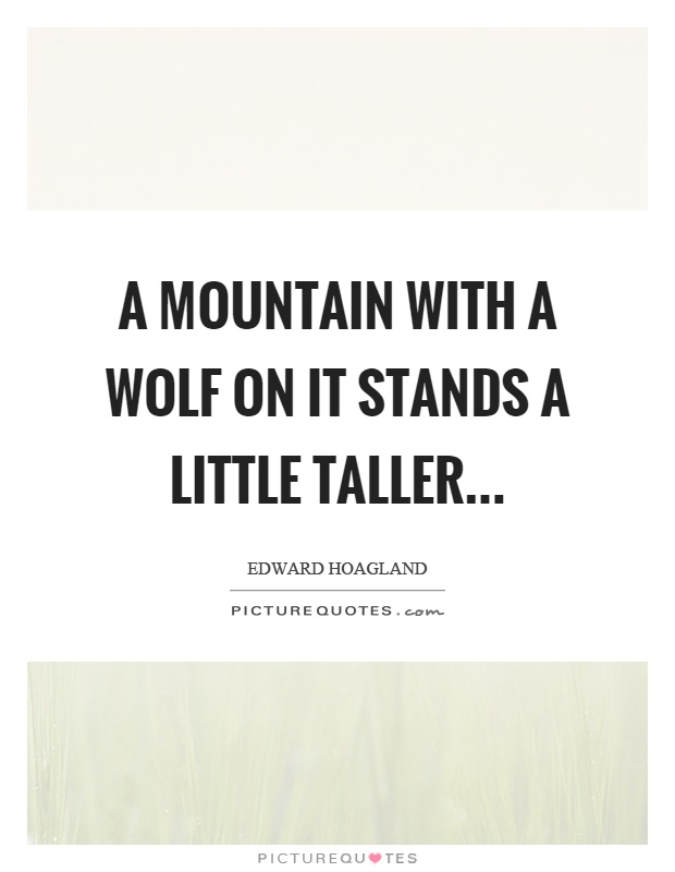 A mountain with a wolf on it stands a little taller Picture Quote #1