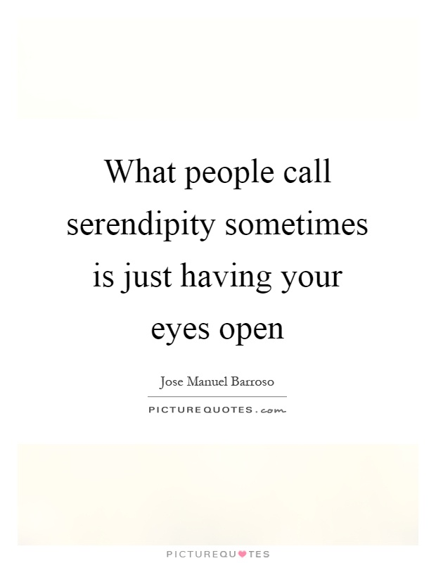 What people call serendipity sometimes is just having your eyes open Picture Quote #1