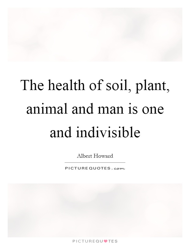 The health of soil, plant, animal and man is one and indivisible Picture Quote #1