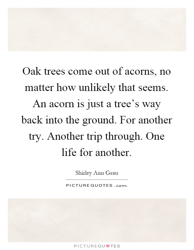 Oak trees come out of acorns, no matter how unlikely that seems. An acorn is just a tree's way back into the ground. For another try. Another trip through. One life for another Picture Quote #1