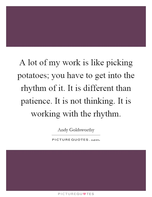 A lot of my work is like picking potatoes; you have to get into the rhythm of it. It is different than patience. It is not thinking. It is working with the rhythm Picture Quote #1