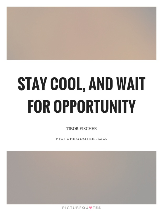 Stay cool, and wait for opportunity Picture Quote #1