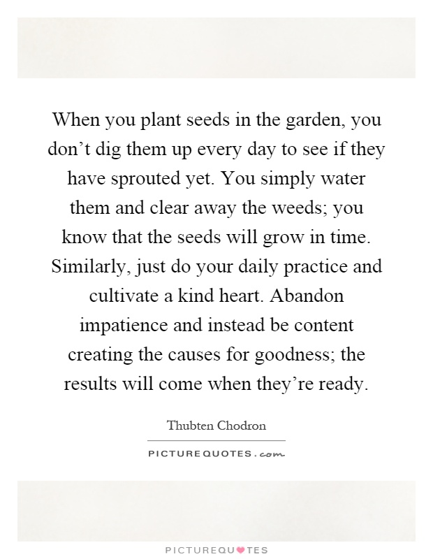 When you plant seeds in the garden, you don't dig them up every day to see if they have sprouted yet. You simply water them and clear away the weeds; you know that the seeds will grow in time. Similarly, just do your daily practice and cultivate a kind heart. Abandon impatience and instead be content creating the causes for goodness; the results will come when they're ready Picture Quote #1