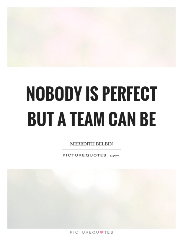 Nobody Is Perfect But A Team Can Be Picture Quotes