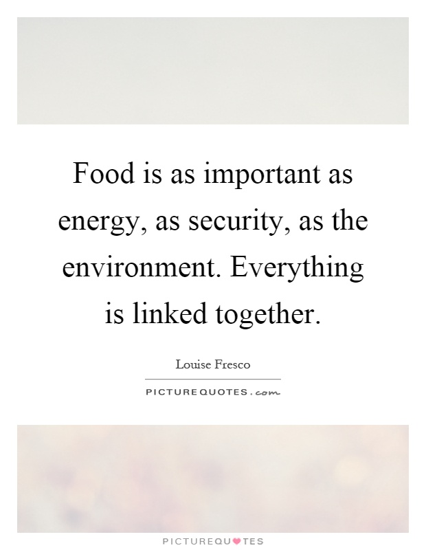 Food is as important as energy, as security, as the environment. Everything is linked together Picture Quote #1