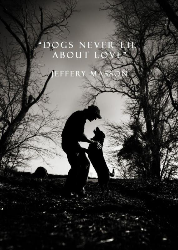 Dogs never lie about love Picture Quote #1