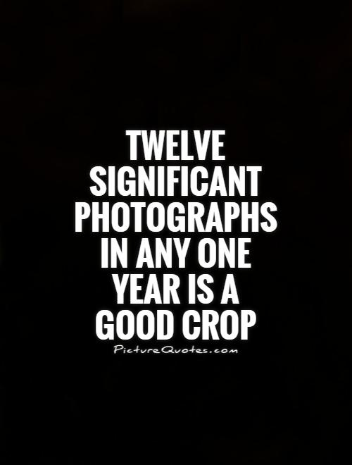 Twelve significant photographs in any one year is a good crop Picture Quote #1