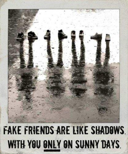 Fake friends are like shadows. With you only on sunny days Picture Quote #1