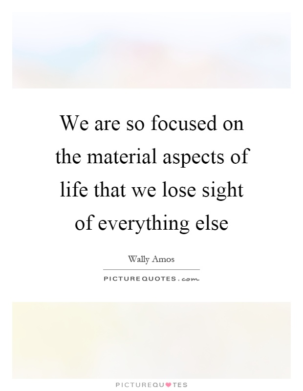 We are so focused on the material aspects of life that we lose sight of everything else Picture Quote #1