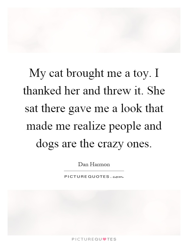 My cat brought me a toy. I thanked her and threw it. She sat there gave me a look that made me realize people and dogs are the crazy ones Picture Quote #1