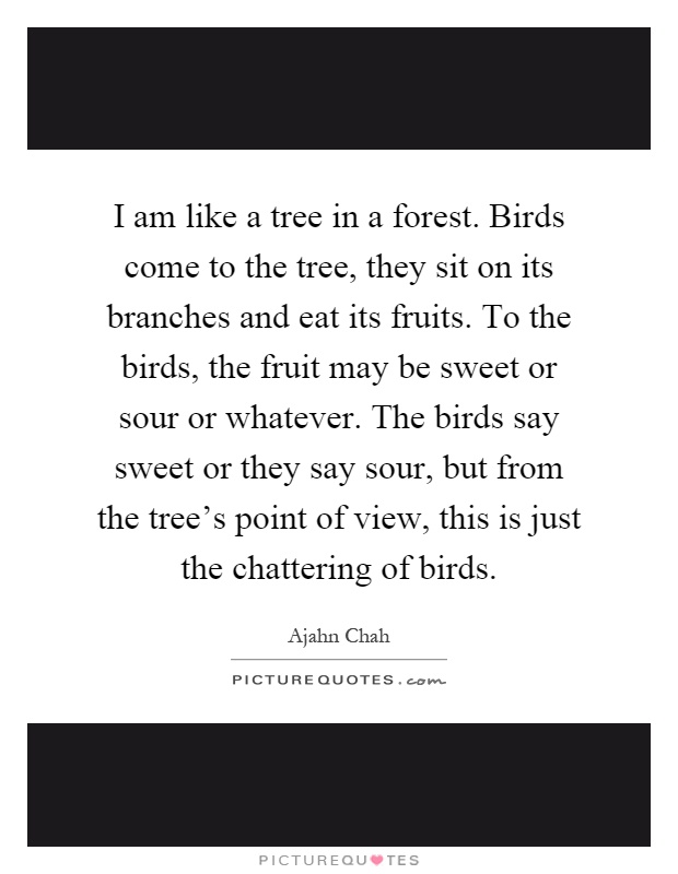 I am like a tree in a forest. Birds come to the tree, they sit on its branches and eat its fruits. To the birds, the fruit may be sweet or sour or whatever. The birds say sweet or they say sour, but from the tree's point of view, this is just the chattering of birds Picture Quote #1