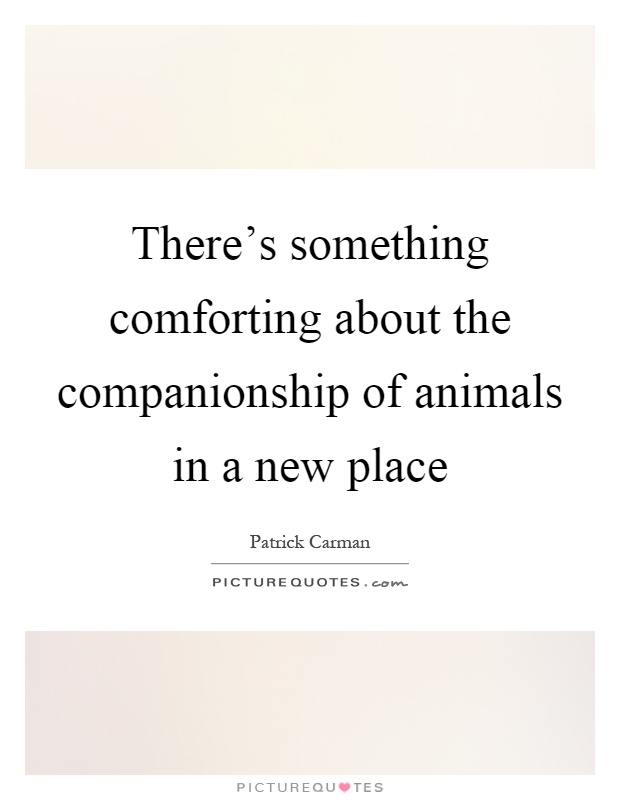 There's something comforting about the companionship of animals in a new place Picture Quote #1