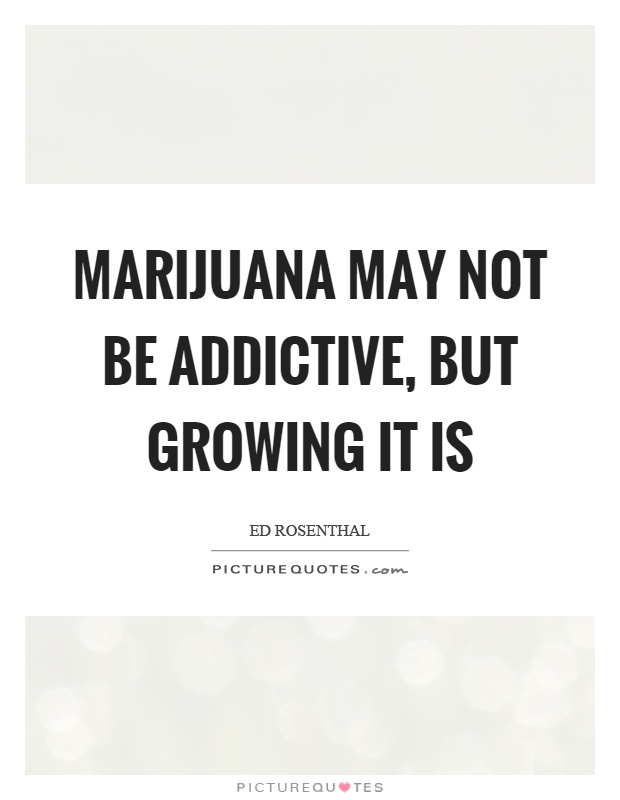 Marijuana may not be addictive, but growing it is Picture Quote #1