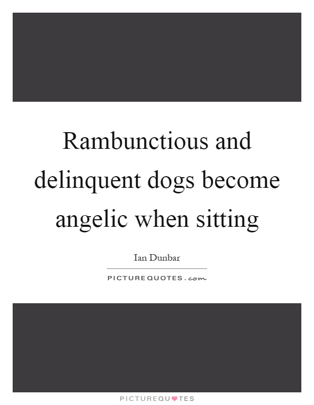 Rambunctious and delinquent dogs become angelic when sitting Picture Quote #1