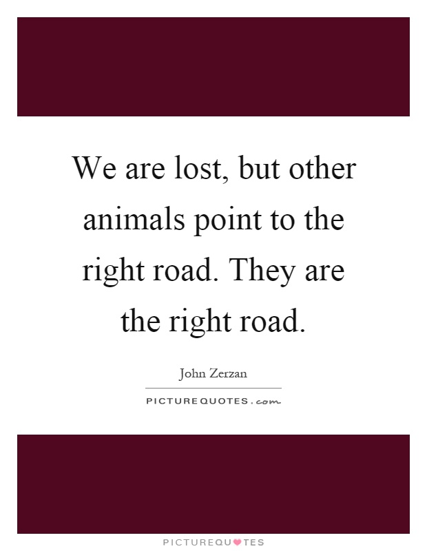 We are lost, but other animals point to the right road. They are the right road Picture Quote #1