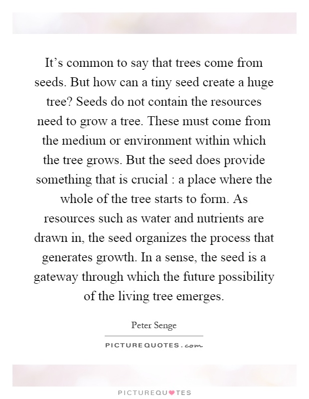 It's common to say that trees come from seeds. But how can a tiny seed create a huge tree? Seeds do not contain the resources need to grow a tree. These must come from the medium or environment within which the tree grows. But the seed does provide something that is crucial : a place where the whole of the tree starts to form. As resources such as water and nutrients are drawn in, the seed organizes the process that generates growth. In a sense, the seed is a gateway through which the future possibility of the living tree emerges Picture Quote #1