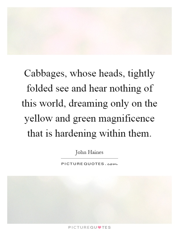 Cabbages, whose heads, tightly folded see and hear nothing of this world, dreaming only on the yellow and green magnificence that is hardening within them Picture Quote #1