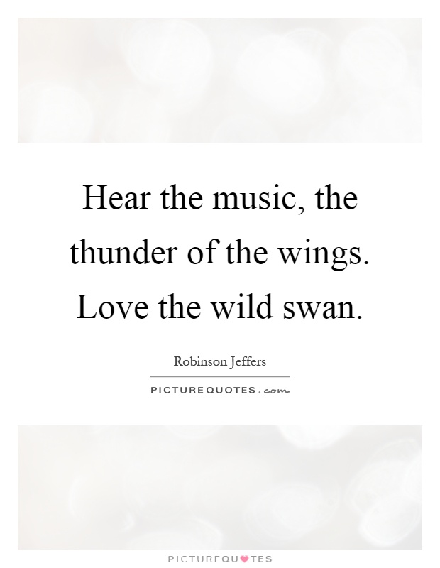 Hear the music, the thunder of the wings. Love the wild swan Picture Quote #1