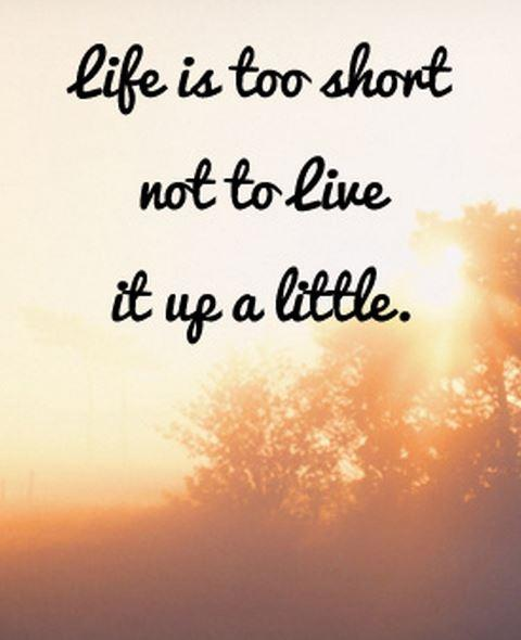 Life is too short not to live it up a little! Picture Quote #1