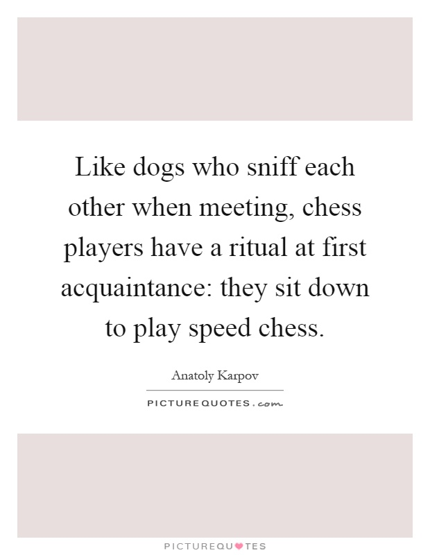 Like dogs who sniff each other when meeting, chess players have a ritual at first acquaintance: they sit down to play speed chess Picture Quote #1