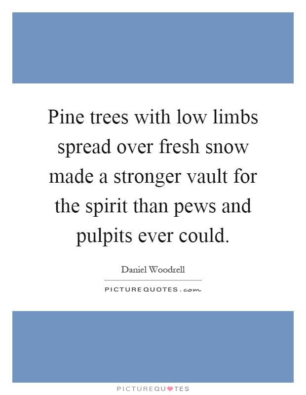Pine trees with low limbs spread over fresh snow made a stronger vault for the spirit than pews and pulpits ever could Picture Quote #1