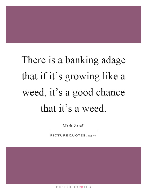 There is a banking adage that if it's growing like a weed, it's a good chance that it's a weed Picture Quote #1