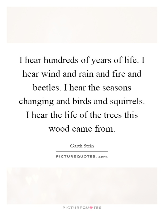 I hear hundreds of years of life. I hear wind and rain and fire and beetles. I hear the seasons changing and birds and squirrels. I hear the life of the trees this wood came from Picture Quote #1