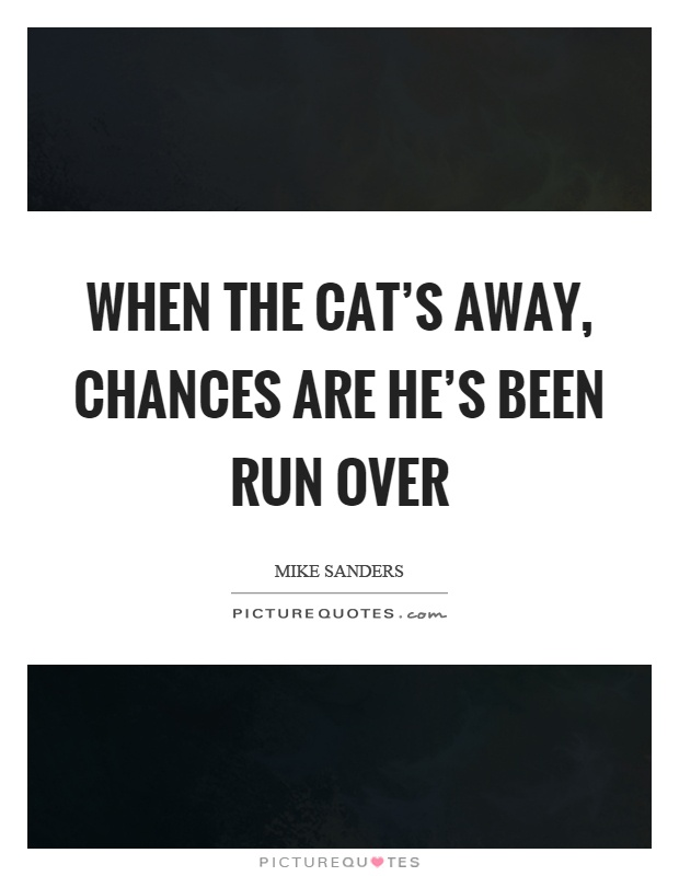 When the cat's away, chances are he's been run over Picture Quote #1