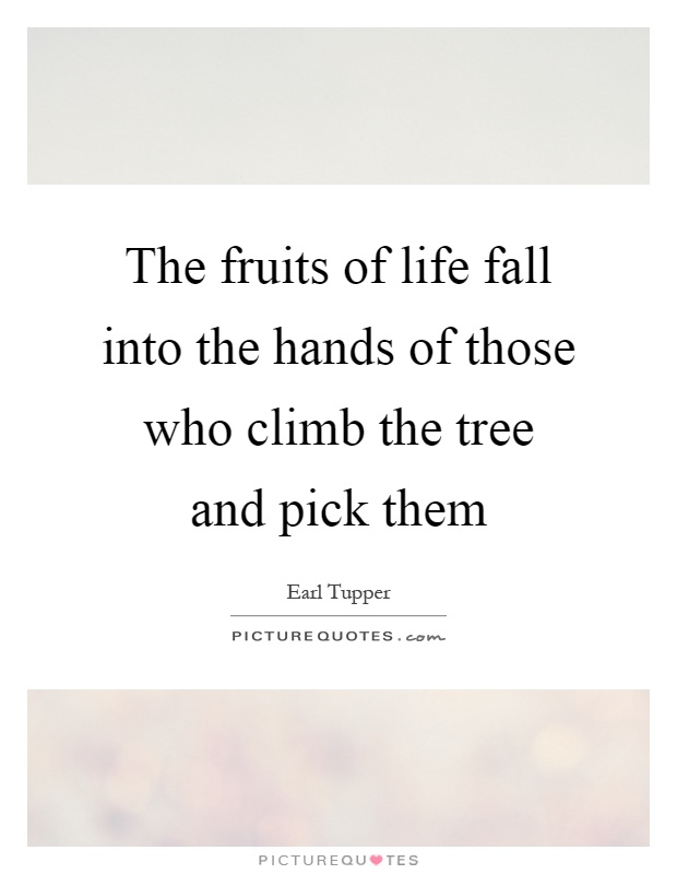 The fruits of life fall into the hands of those who climb the tree and pick them Picture Quote #1