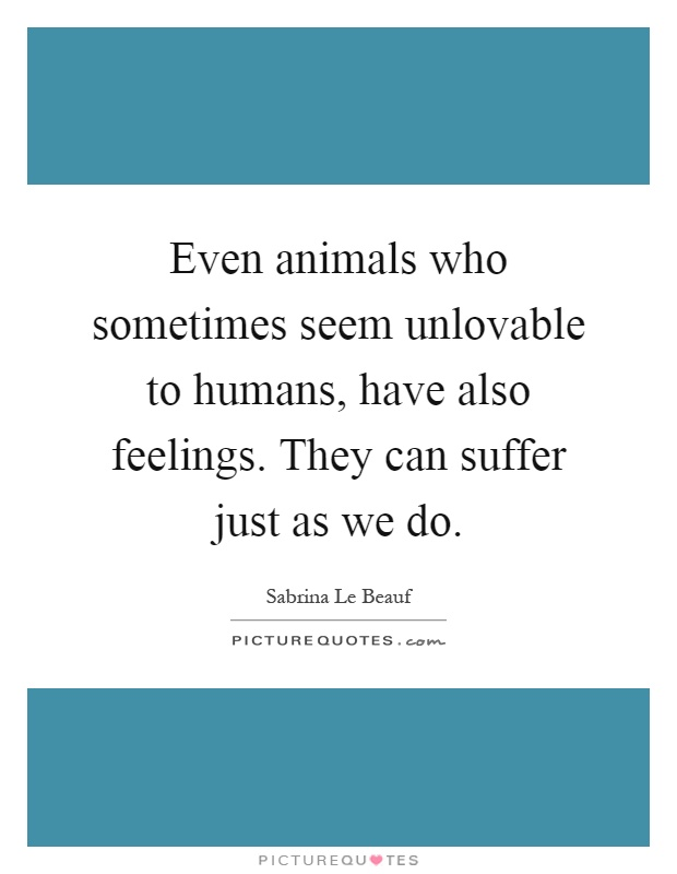 Even animals who sometimes seem unlovable to humans, have also feelings. They can suffer just as we do Picture Quote #1
