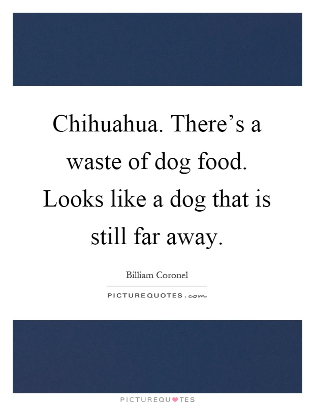 Chihuahua. There's a waste of dog food. Looks like a dog that is still far away Picture Quote #1