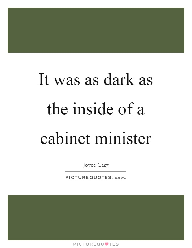 It was as dark as the inside of a cabinet minister Picture Quote #1