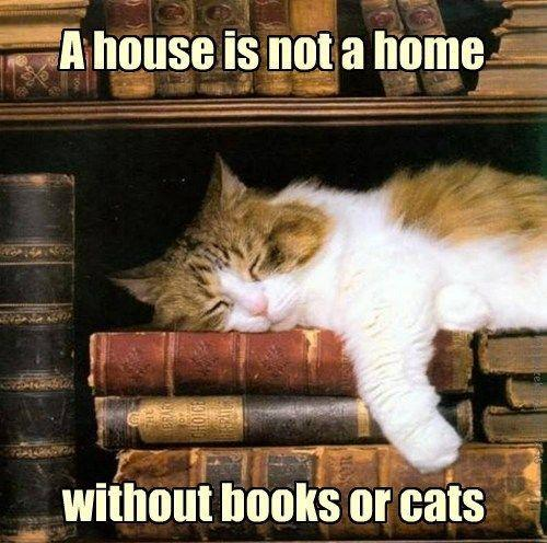 A house is not a home without books or cats Picture Quote #1