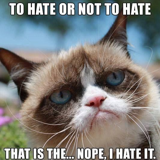 To hate or not to hate, that is the... nope, I hate it Picture Quote #1