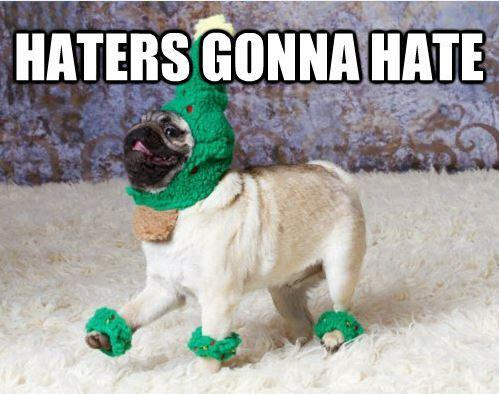 Haters gonna hate Picture Quote #7
