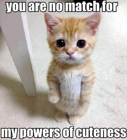 You are no match for my powers of cuteness. Picture Quote #1