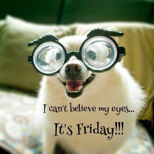 Its Friday Funny Quotations: I Can't Believe My Eyes. It's Friday