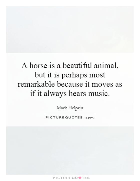 A horse is a beautiful animal, but it is perhaps most remarkable because it moves as if it always hears music Picture Quote #1