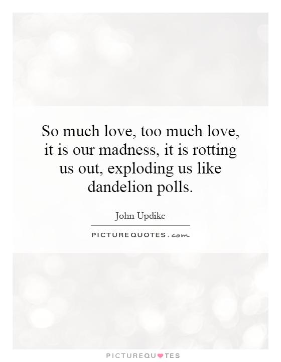 So much love, too much love, it is our madness, it is rotting us out, exploding us like dandelion polls Picture Quote #1