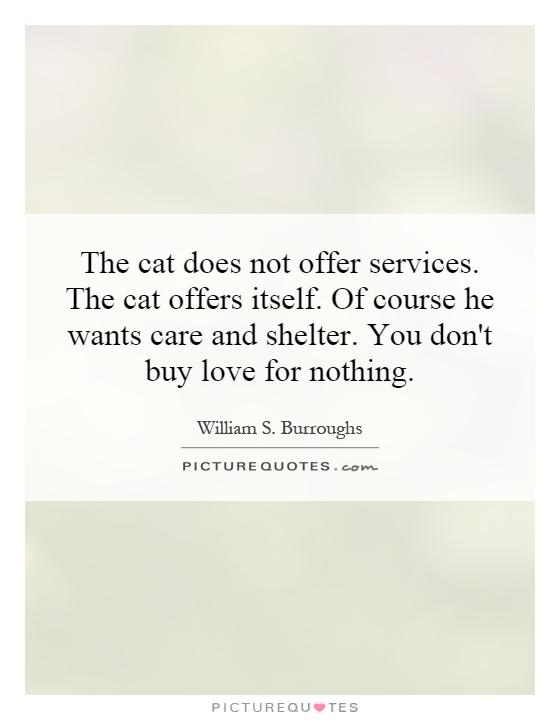 The cat does not offer services. The cat offers itself. Of course he wants care and shelter. You don't buy love for nothing Picture Quote #1