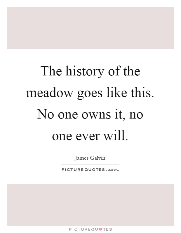 The history of the meadow goes like this. No one owns it, no one ever will Picture Quote #1