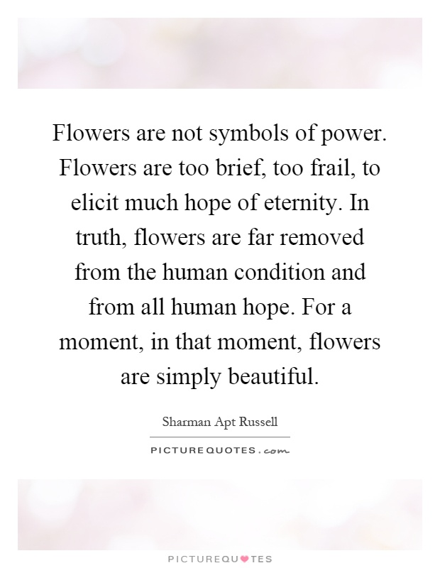 Flowers are not symbols of power. Flowers are too brief, too frail, to elicit much hope of eternity. In truth, flowers are far removed from the human condition and from all human hope. For a moment, in that moment, flowers are simply beautiful Picture Quote #1