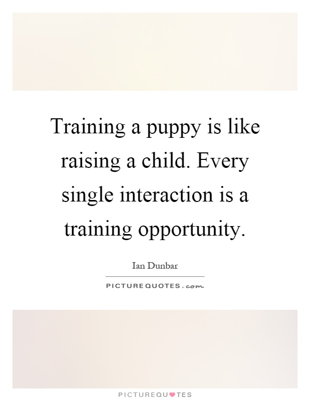 Training a puppy is like raising a child. Every single interaction is a training opportunity Picture Quote #1
