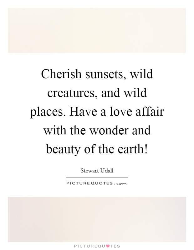 Cherish sunsets, wild creatures, and wild places. Have a love affair with the wonder and beauty of the earth! Picture Quote #1