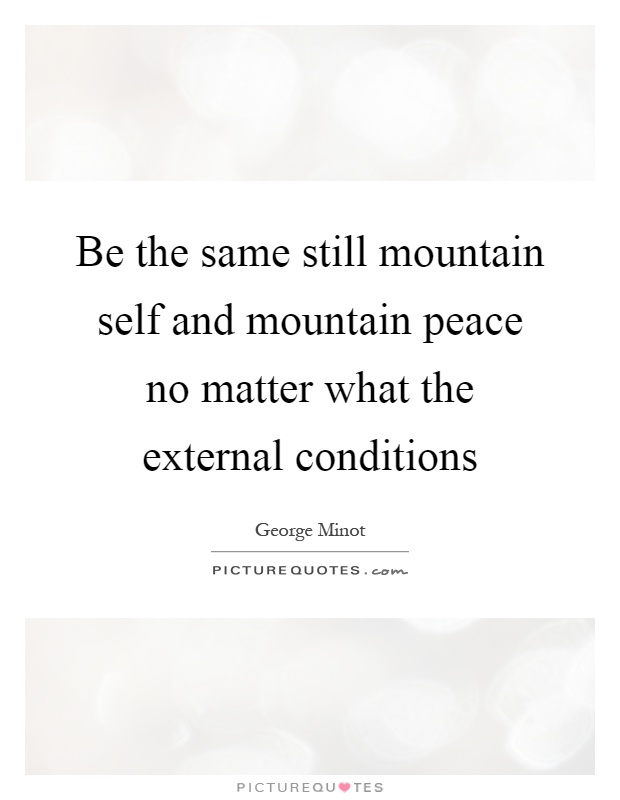 Be the same still mountain self and mountain peace no matter what the external conditions Picture Quote #1